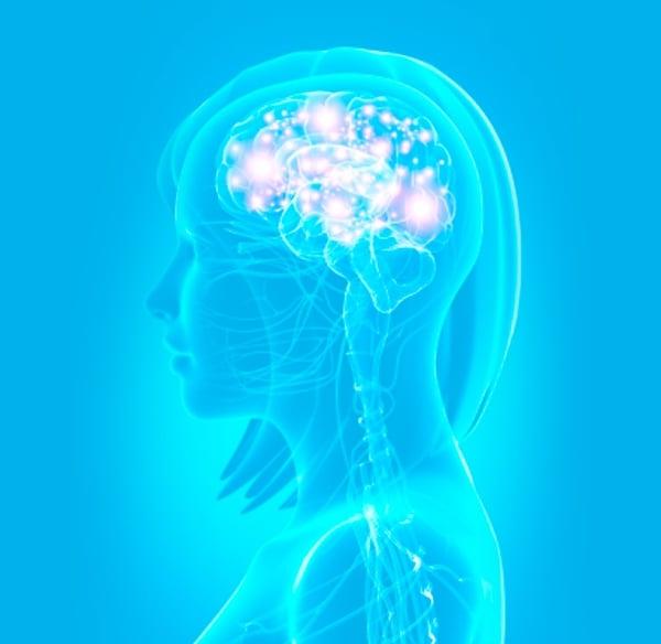 Neurociencia-en-el-Impacto-Empresarial-02