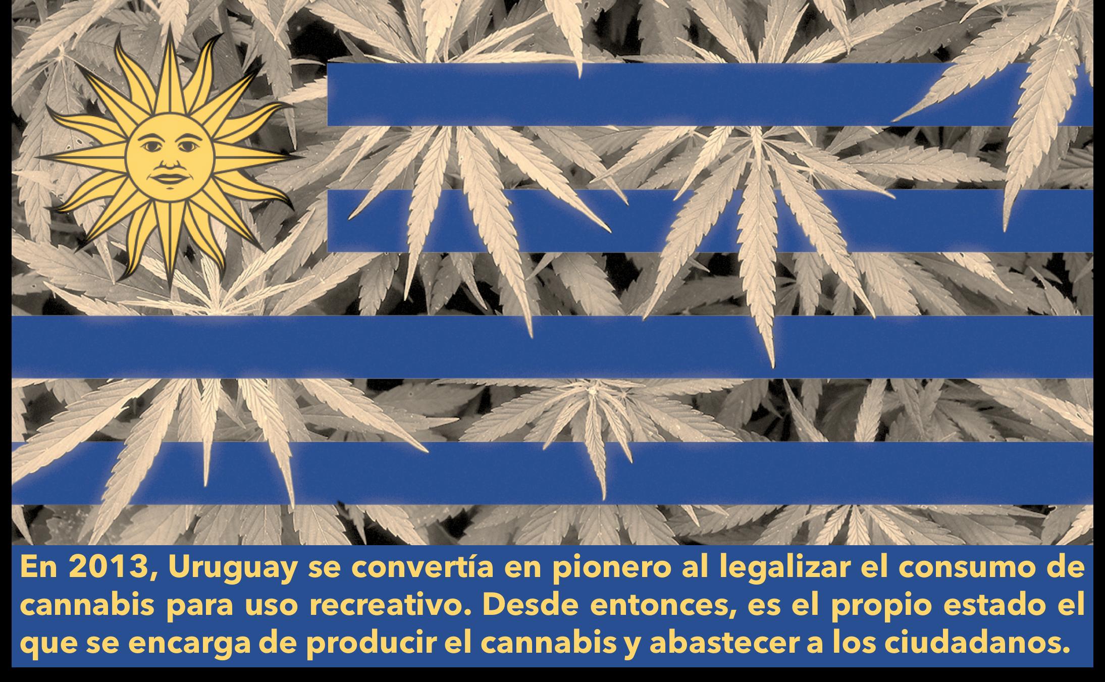 URUGUAY CANNÁBICO