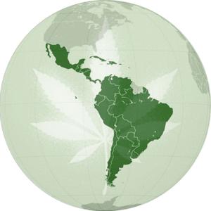 world cannabis