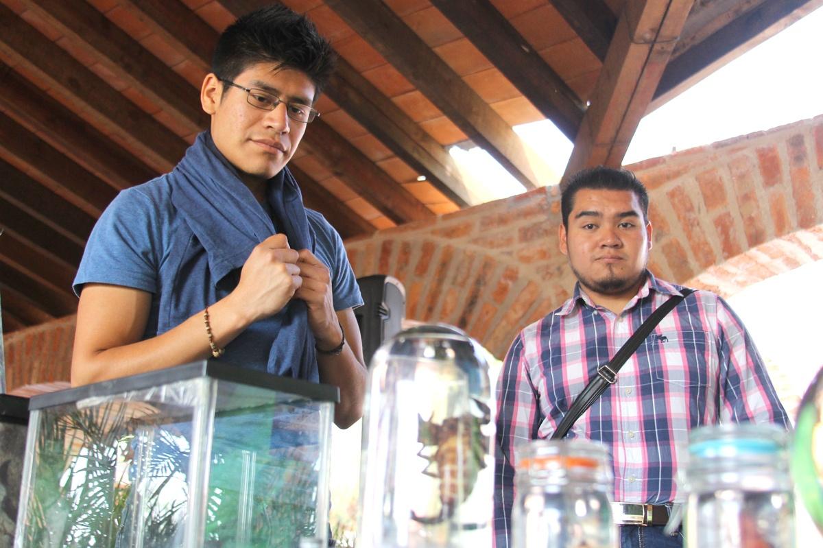 EXPO de Instituto de Ecología Guanajuato Hackaton CFOX