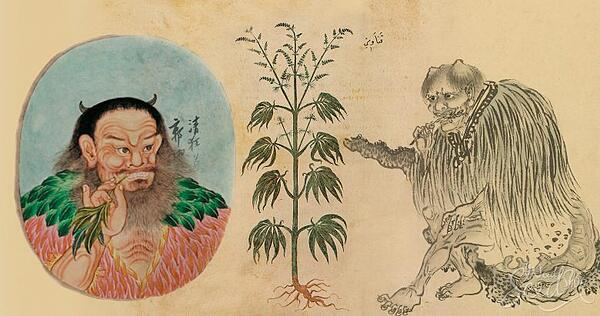 historia_del_cannabis