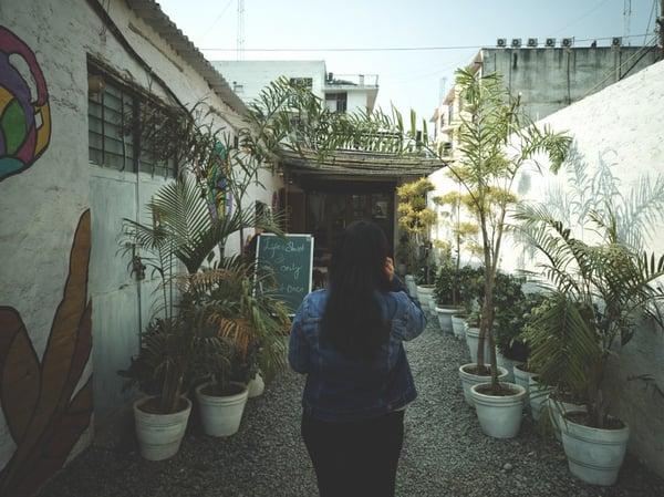 huerto-urbano-2