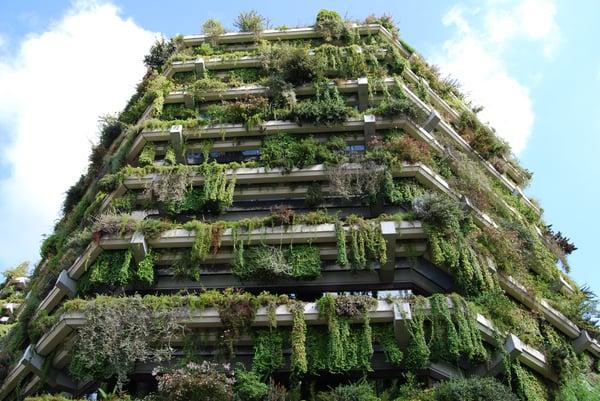 jardin_vertical-2
