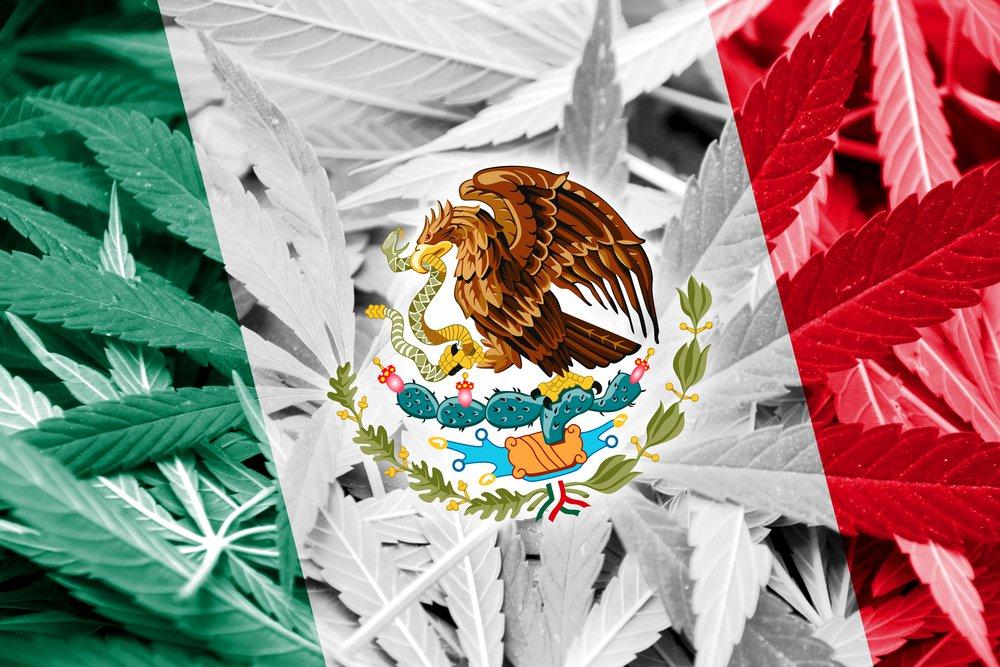 mexico-marijuana.jpg